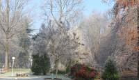 L'inverno e i suoi colori