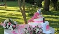 wedding milano ristorante al piave